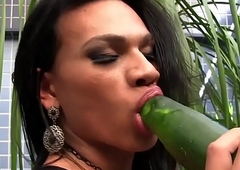 Latina sheboy drills her ass with cucumber