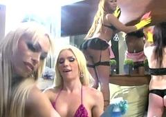 Three t-girls squirt cum not susceptible their bellow plump ass